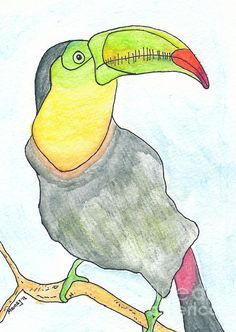 "TOOOOOOUC! 5x7"" The glorious Toucan. watercolor drawing"