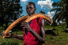 Michael Oryem poses with two elephant tusks that he helped the Ugandan army recover from the Lord's Resistance Army, an armed group that's deeply involved with central African elephant poaching. Photo: Brent Stirton, 2nd Prize, Nature Stories,  the 59th annual World Press Photo photography contest.