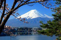 Tokyo tecnologia e tradizione....pezzi di mondo eccone uno per voi #viaggi #Tokyo #viaggiare #vacanze #Giappone #pezzidimondo