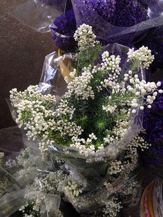 Flor de Arroz (inverno)