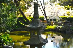 Japanese Tea Garden Golden Gate Park, Fountain, Japanese, Tea, Garden, Outdoor Decor, Japanese Language, Lawn And Garden, Water Fountains
