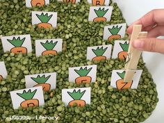 Spring is in the air with this hands on peas and carrots alphabet sensory bin! Match letters, work on names, or build words with these…