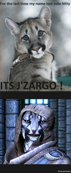 I don't remember much of J'Zargo, but I remember he was sketchy. Actually, all the Khajiit were pretty sketchy