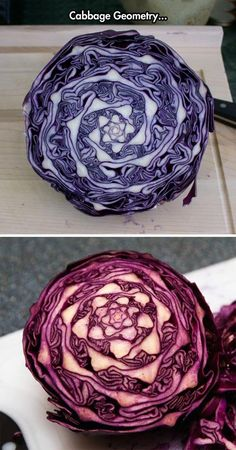 We are so full of ourselves crawling through life with eyes and hearts closed tight that even if we are presented with the magnificence of The Cabbage we are blind. Sacrilegious fools!!!
