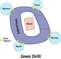 All Derby Drills: Jaws