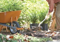 The cold weather months are a great time to start planning for your spring garden. From inspiration to budgeting tips, read up on our gardening resolutions at The Home Depot's Garden Club.