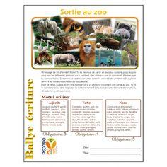Écriture Rallye au zoo (narratif)