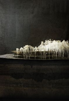 modelarchitecture: zumthor-retreat