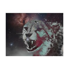 nothing matters, i'm just chasing the wind. ❤ liked on Polyvore featuring animals, pictures, backgrounds, photos and images