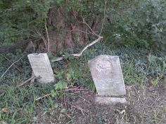 Arenzville, IL, North Cemetery, close-up of stones near tree.