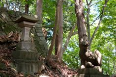 Guardian lion-dog and Stone lantern at Shinto shrine