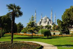 the BLUE MOSQUE-- built in the early 1600's &  inspired by byzantine culture and islamic architecture. it is most famous for the blue tiles that adorn the interior. the mosque is still in use today. istanbul,turkey.