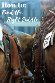 How-to: Find the Right Saddle. Heed these tips to find the best saddle for you and your horse!