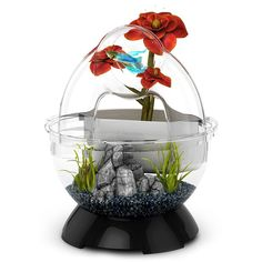 BioBubble Bubble Tunnel Kit