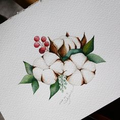 Girly Drawings, Cool Art Drawings, Colorful Drawings, Watercolor Fruit, Pen And Watercolor, Watercolor Flowers, Plant Illustration, Botanical Illustration, Watercolor Painting Techniques