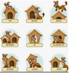 Buy Cartoon Dog In Different Poses To Illustrate by on GraphicRiver. Cartoon dog in different poses to illustrate English prepositions of place. Vector illustration for preschool kids. Learning English For Kids, English Worksheets For Kids, English Lessons For Kids, Kids English, English Activities, Kids Learning Activities, Teaching Resources, English Prepositions, English Phonics