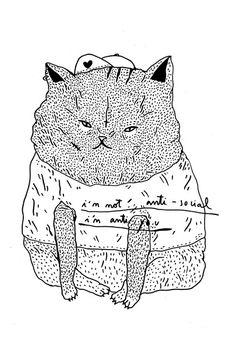http://www.wastedrita.com/files/gimgs/th-133_133_cat2wastedrita.jpg