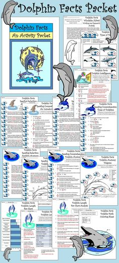 Dolphin Facts Activity Packet: This colorful activity packet provides many activities detailing one of the world's favorite mammals.  Contents include: * Reading Selections & Comprehension Quizzes: Introduction to Dolphins, Types of Dolphins, & Dolphin Anatomy * Types of Dolphins Worksheet * Dolphin Intelligence Worksheet * Anatomy Diagram  * Dolphin Length Table * Dolphin Length Bar Graph * Bar Graph Analysis Questions * Math Coloring Sheet * Dolphin Hybrid Research Activity * Coloring Sheets