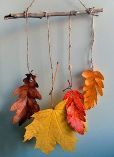 85 creative ideas for tinkering with leaves - Fall Crafts For Kids Crafts For Teens To Make, Fall Crafts For Kids, Easy Crafts, Diy And Crafts, Easy Diy, Advent Wreath, Recycled Crafts, Christmas Signs, How To Make Wreaths