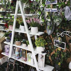 Escaleras de Madera para decoración Ladder Decor, Diy, Home Decor, Wooden Staircases, Home, Decoration Home, Bricolage, Room Decor, Do It Yourself