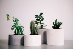 Set of 4 Round Concrete Planters // Windowsill Cachepot // Concrete Jar // Pot for Succulent // Lovely Gift