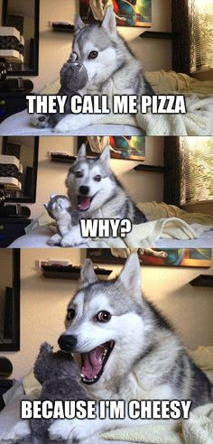 Top 18 LOL Hilarious and Funniest Dog Memes Clean Dogs are so funny that if you collect some words form them then it would be clean, LOL, funniest and much more. Let us show you 18 Hilarious and Funniest Dog Memes clean LOL. Check Out More… Pun Dog Meme, Dog Memes Clean, Bad Pun Dog, Funny Dog Jokes, Puns Jokes, Haha Funny, Funny Quotes, Memes Humor, Funny Humor