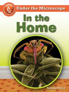 Ebooks for children and more (My password: children09): [Ebook] In the Home