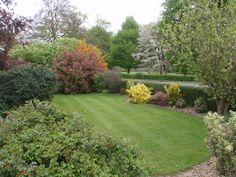 Spring lawn and garden