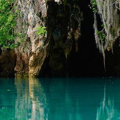 🌎Bermuda:Walsingham Nature Reserve Bermuda
