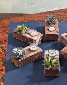 Hollow out two wells in a brick for an easy table top piece of decoration that serves as both a light and a home for your baby plant. Photo: Curbly