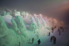 """Ghostly trees covered in snow and rime ice — known as """"snow monsters"""" in the mountainous areas of northern Japan"""