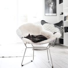 Ode to Things - silver-blonde: via frufly Nordic Home, Scandinavian Home, Interior Design Inspiration, Home Decor Inspiration, Decor Ideas, Parisian Architecture, Silver Blonde, Gray Interior, Dream Decor