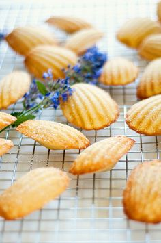 Lemon Madeleines with almond