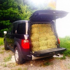 A god designed this car. 12 bales of hay. I love my #hondaelement #countrylife