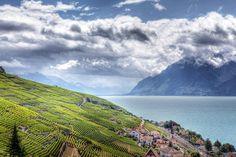 Lac Léman Switzerland by Jeri Peier - Photo 147860739 -