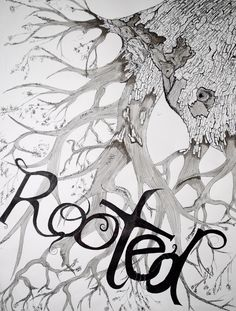 Rooted in Christ Series: Rooted