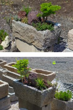 Kamenné koryto z přírodního kamene je menších rozměrů a vhodné je zejména do exteriéru. Využití má pro zvířata, ale také pro osazení květinami jako dekorační prvek zahrady Krásně vypadá osázené rostlinami. Plants, Decor, Dekoration, Decoration, Dekorasyon, Home Improvements, Decorating, Interiors, Embellishments