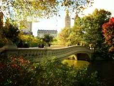 Looking out over Bow Bridge at the height of autumn. Central Park, New York City