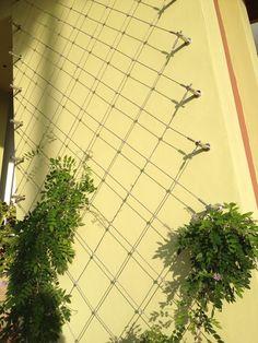 Um jardim para cuidar: Treliças e paineis no seu jardim