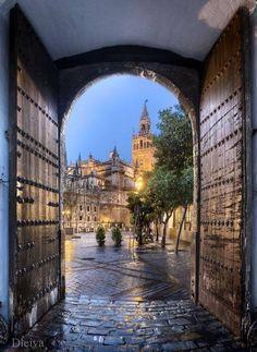 La Giralda desde Los Reales Alcazares, Sevilla, Andalucia, Spain