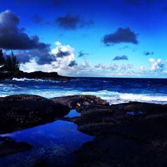 Hawaiian Paradise Park, Hilo - Hawaii.