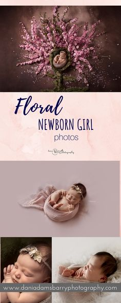 Creative Floral Newborn Girl Photography - Poppy Flowers and Cherry Blossoms Newborn photos - Dallas TX Girl Photography, Newborn Photography, Amazing Photography, Photography Flowers, Dark Flowers, Poppy Flowers, Baby Girl Photos, Newborn Pictures, Baby Pictures