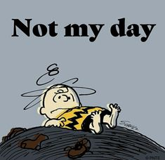 Today has not been my day. Snoopy Cartoon, Peanuts Cartoon, Peanuts Snoopy, Snoopy Love, Snoopy And Woodstock, Work Memes, Work Humor, Charlie Brown Characters, Snoopy Pictures