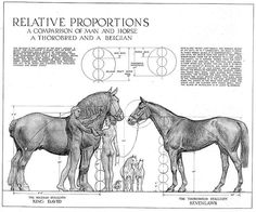 Proportional drawing of people and horses