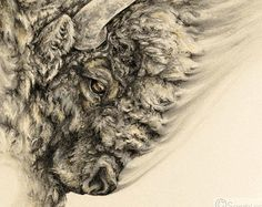 Animal art prints and gifts by Sarah Leea Petkus. by NestandBurrow