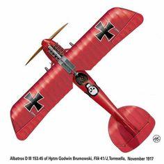 Albatros D.III (Oef) 153.45, by Harry Dempsey