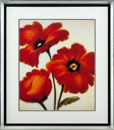 Venetian Poppy II Framed Print