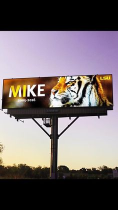 In Baton Rouge,LA. Yes, our tiger is that important to us. GEAUX TIGERS!