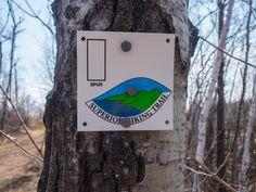 Bean and Bear Lakes Superior Hiking Trail Trail Signs, Twin Lakes, Lake Superior, North Shore, Hiking Trails, Outdoor Activities, Minnesota, Camping, Bear
