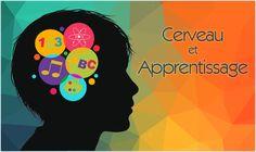 Cerveau et Apprentissage : dossiers et activités pour comprendre comment notre cerveau nous permet d'apprendre